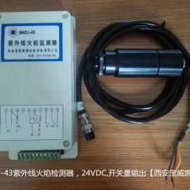 24V火焰监测器 24V电源输入燃烧器锅炉用火焰检测器