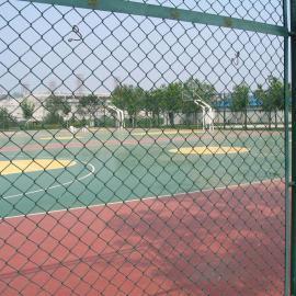镀锌勾花网最低价 公路铁路体育场涂塑围栏网