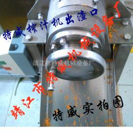 果蔬压榨一体机 渣汁自动分离压榨机 果蔬汁设备
