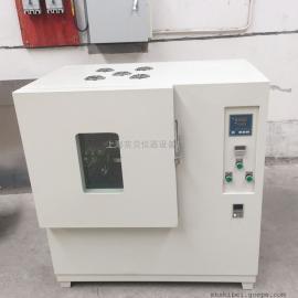 上海实贝换气式老化试验箱HDW-090B高温热老化箱