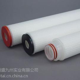 PES微孔折叠滤芯 20寸3微米厂家直销