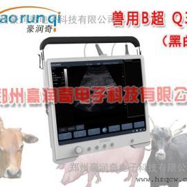 便携式兽用B超Q3价格,兽用B超厂家报价