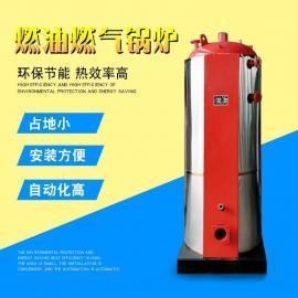 小型燃气热水洗浴锅炉