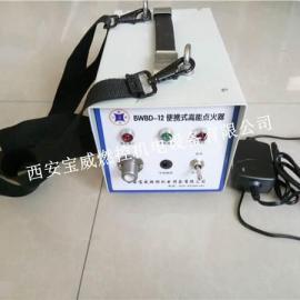 BWBD-12高能电子点火装置_点火杆可非标定制12V直流高能点火器