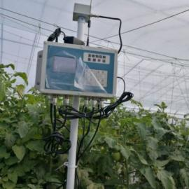 RYQ-4ZD 副业冷床大棚气体监测