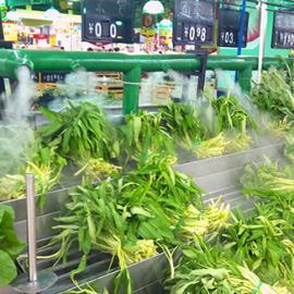 蔬菜加湿机器 超声波加湿器
