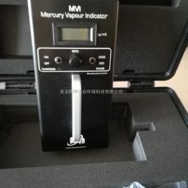 英国ionMVI-DL数据型汞蒸汽检测仪 超级好用的MVI汞蒸气