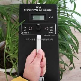 离子专属MVI汞蒸汽检测仪产品资料这里找