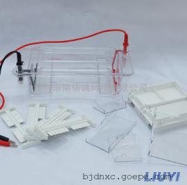 北京六一DYCP-31DN型琼脂糖水平电泳仪小号电泳槽
