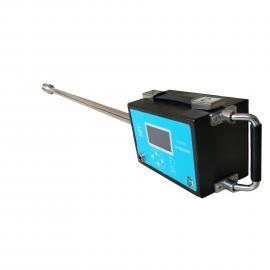 阻容法湿度仪 含湿量检测仪 烟气含湿量检测器 烟气水分仪-国瑞力