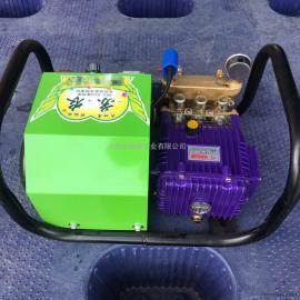 电动全自动直连喷雾机、果树打药机、电动果树打药机