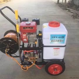 农业疾控消毒手推60L打药机 捍绿消毒喷雾器