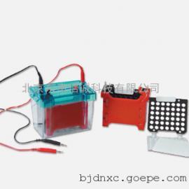 DYCZ-40D型迷你转印电泳仪(小号)转印槽