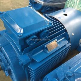 厂家直销 YPT-315L1-4-160KW 低压普通变频调速电机