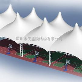 广西景观膜结构厂家 广西张拉膜工程价格