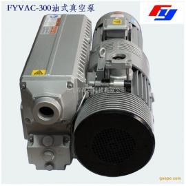 飞粤真空泵FY-0300油式旋片真空泵玻璃压片高压釜专用真空泵
