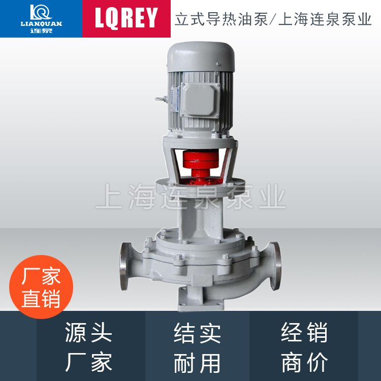 LQERY100-100-410F立式节能热油泵锅炉油泵导热油耐高温泵