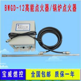 沼气火炬必配BWGD-12高能点火器 BWZJ-13紫外线火焰检测器