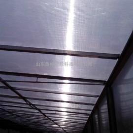 临沂防滴露阳光板,抗紫外线阳光板价格
