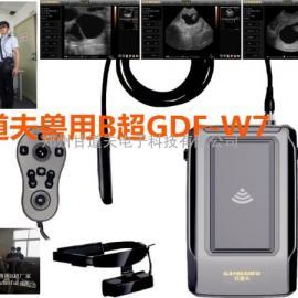 高清便携式兽用B超,视频眼镜动物B超GDF-W7