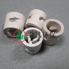 鲍尔环陶瓷填料 散堆陶瓷填料 塑料散堆填料