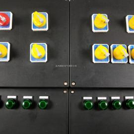 多回路带总开关工程塑料防爆防腐配电箱