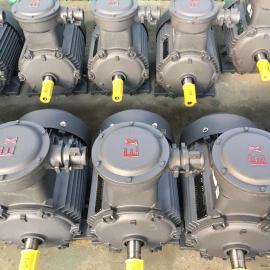 超高效隔爆型三相异步电动机