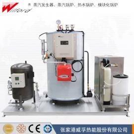 免安装撬装式锅炉系统-lws燃油气蒸汽锅炉