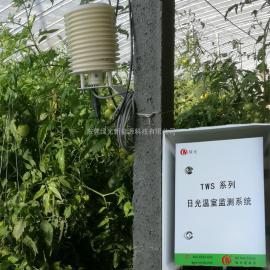 绿光 农业温室大棚日光监测系统TWS-WS2