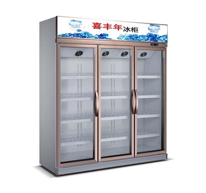 石家庄立式冷柜