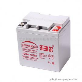 乐珀尔蓄电池6-GFM-24/现货批发销售12V24Ah技术参数/规格
