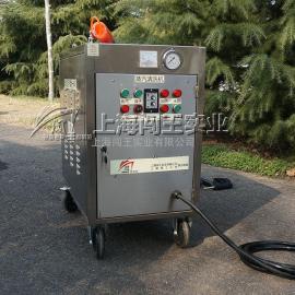 闯王CWD12A-1北京汽车美容店适用机型 手推车蒸汽洗车机多少钱