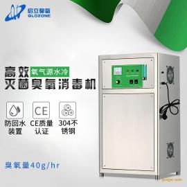 启立40G工业氧气源高浓度污水臭氧发生器 高效灭菌臭氧消毒机