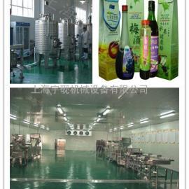 桑葚果酒、梅子果酒饮品饮料中小试生产线