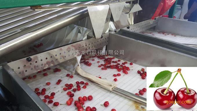樱桃预冷分选线 樱桃清洗、分级、预冷处理线、多功能高效率