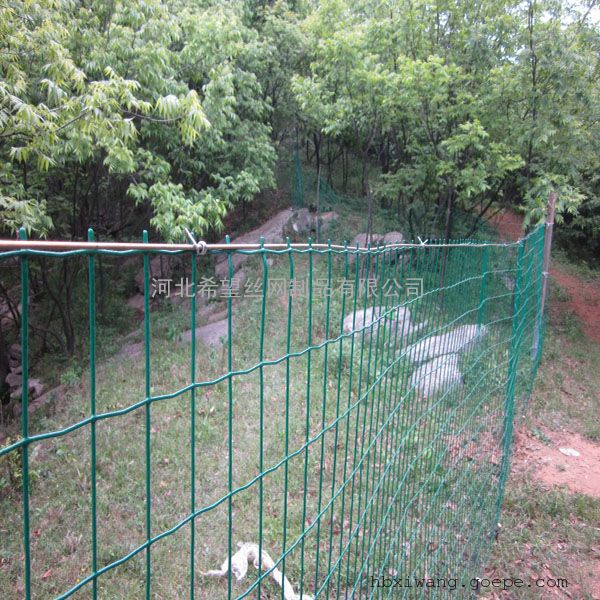鸡鸭养殖防护网 养殖用铁丝围网 养殖防护铁丝网