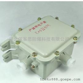 BZL-400L防爆镇流器ExdIIBT4/ExdIICT4/IP54/IP55/G3/4电感镇流