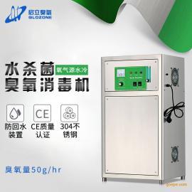 启立50g大型氧气源臭氧发生器 纯净水厂臭氧消毒机