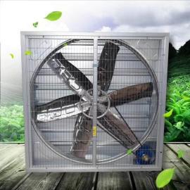 齐鲁安泰牌 轴流通风机 畜牧风机