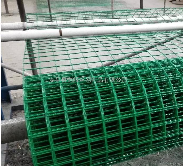 养殖网养鸡网荷兰网厂家