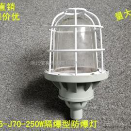 BAD81-J70W/IIC隔爆防爆灯/护栏/吊顶/吸顶/法兰式/金卤灯/钠灯