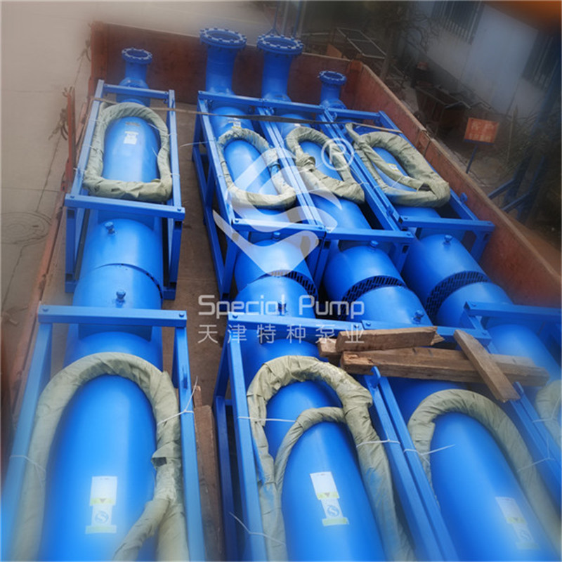 高扬程卧式潜水泵