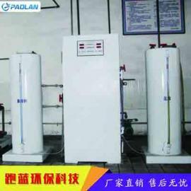PL二氧化氯发生器_污水处理消毒设备 厂家上门安装