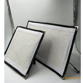 专业摄影灯具柔片灯50W可弯曲双色温便携柔片灯/锂电源/锂电池
