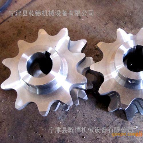 不锈钢传动链轮 标准链轮 双节距链条传动链轮 加工定制