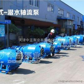 雪橇式潜水轴流泵_大流量