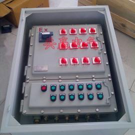 BXM51-12KT防爆照明配电箱 12回路防爆照明配电箱