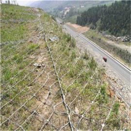 现货边坡防护网@汉中边坡防护网@安首边坡防护网厂家