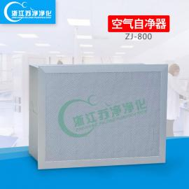 吸顶式空气自净器|ZJ-800型空气自净器生产厂家