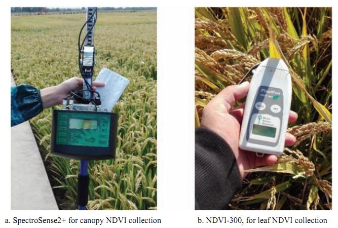 PlantPen叶夹式PRI&NDVI测量仪(2018-4)
